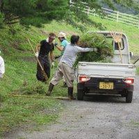 PTA奉仕作業(草刈り)を行いました。