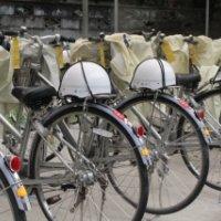 自転車点検実施・・・安全な通学を!