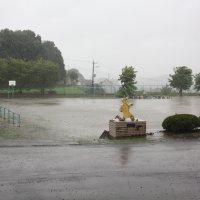 台風のため休校