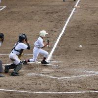 県新人大会(野球)